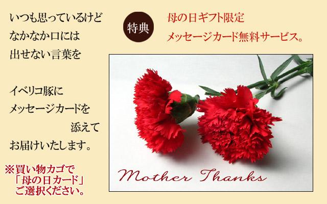 母の日ギフトプレゼントメッセージカード