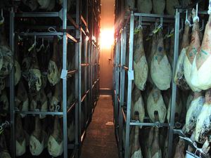 ハモンイベリコ自然乾燥室1